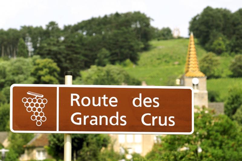 route des grands crus de bourgogne